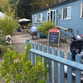 A cafe with a garden,please…